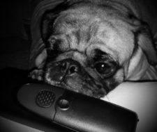 Cómo darse de baja en ONO paso a paso | Teléfono y correo