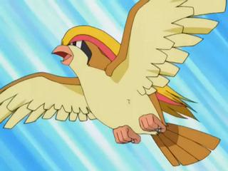 evolucion-de-pidgey-ataque-pidgeot