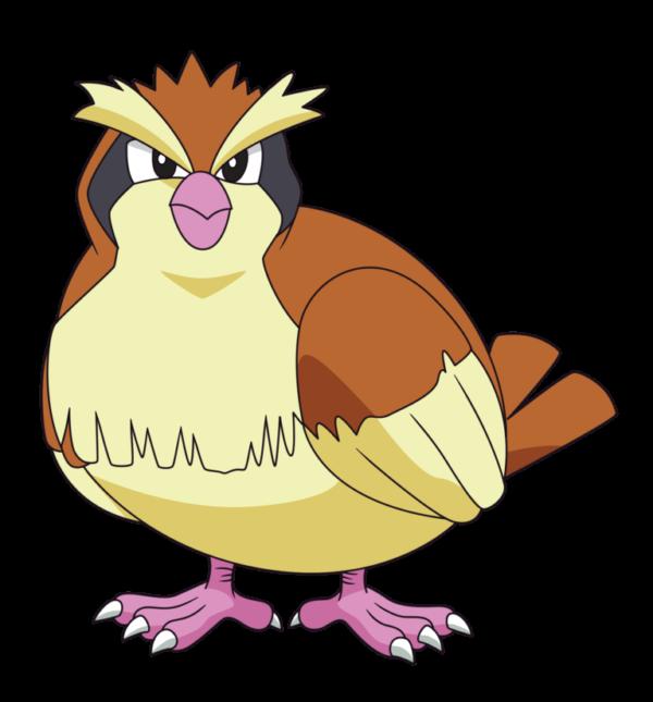 evolucion-de-pidgey-pichon
