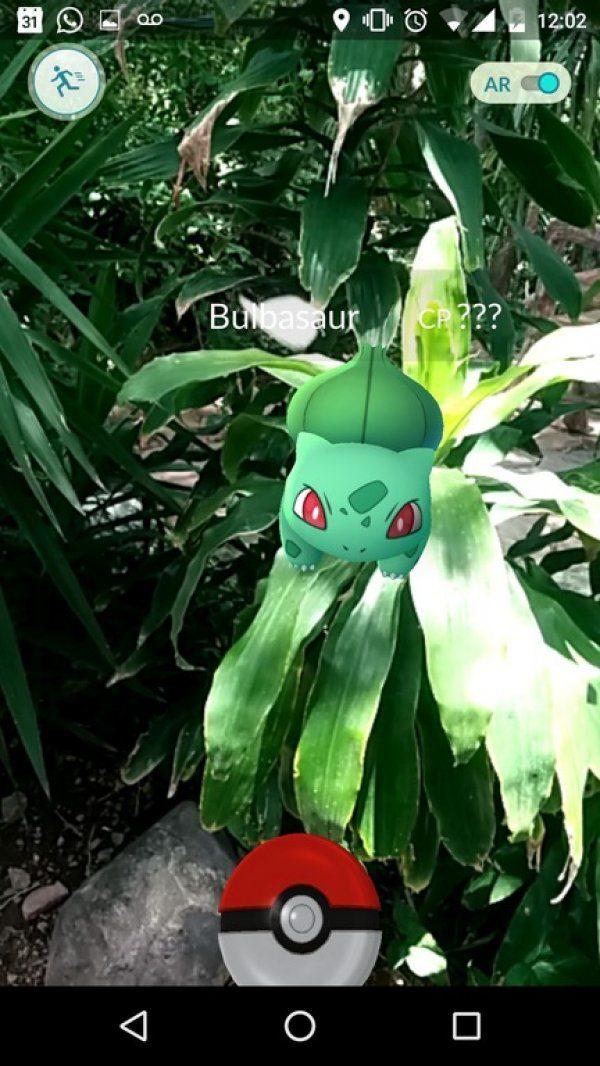 evolucion-de-bulbasaur-todos-los-trucos-plantas