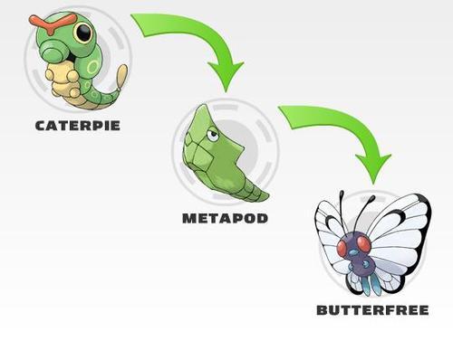 evolucion-de-caterpie-todos-los-trucos-diferentes-evoluciones