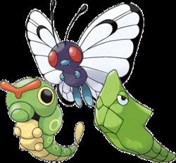 evolucion-de-caterpie-todos-los-trucos-evoluciones