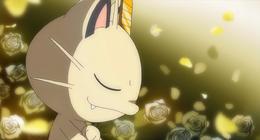 evolucion-de-meowth-todos-los-trucos-flores